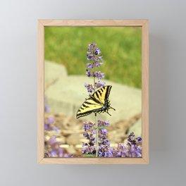 Butterflies and Wildflowers Framed Mini Art Print
