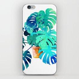 Monstera || iPhone Skin