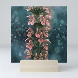Soft Peach colored Salvia flowers Mini Art Print