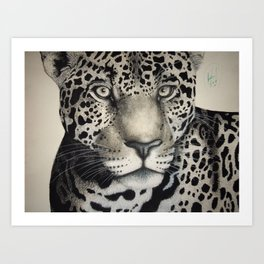 That Look Art Print