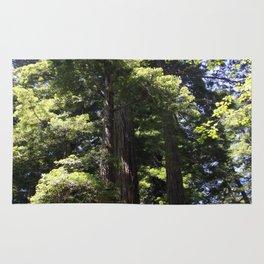 Redwood Treetops Rug