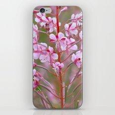 Fireweed 3990 iPhone & iPod Skin