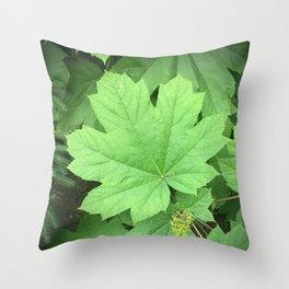 Emerald Star Throw Pillow