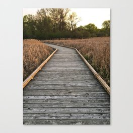 Westwood Hills Nature Center, St. Louis Park, MN Canvas Print