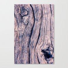 Wood 02 Canvas Print