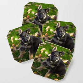 Little German Shepherd puppy Coaster