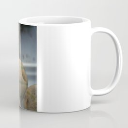 A Melon! Coffee Mug