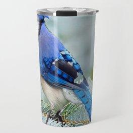Blue Jay  in Winter Pine Tree Travel Mug