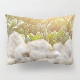 Sunset in Italy, fine art, landscape photo, Sicily photography, Puglia, Apulia, nature lover, love Pillow Sham