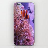 nemo iPhone & iPod Skins featuring Nemo by Joanna Dickinson