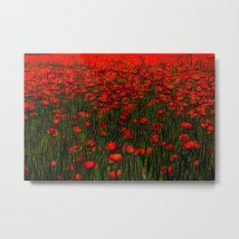 red poppy in the garden Metal Print