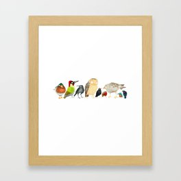 Woodland Bird Collection in white Framed Art Print
