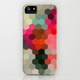 Alturas iPhone Case