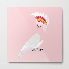 Major Mitchell's cockatoo Metal Print