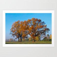 Oaks in the misty Autumn morning (Golden Polish Autumn) #2 Art Print