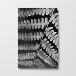 Bracken Fern 1 Metal Print