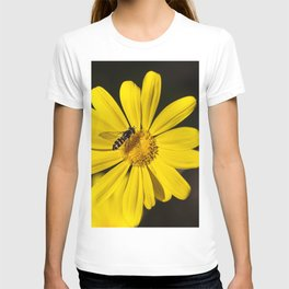 Hover Fly T-shirt
