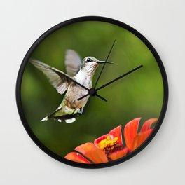 Hummingbird IV Wall Clock