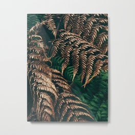 Puerto Rican Rainforest 1 Metal Print