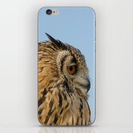 Eagle owl looking right iPhone Skin