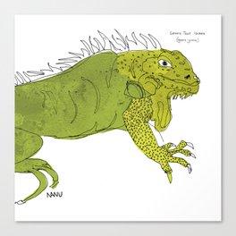 Iguana Iguana Canvas Print