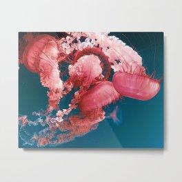 Pink Jelly Metal Print