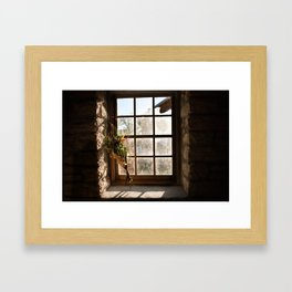 Barn Window and Flowers Framed Art Print