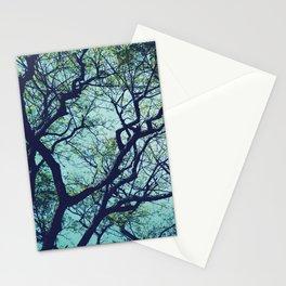 Rain Tree Stationery Cards