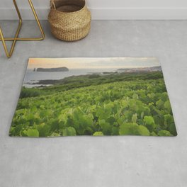 Grapevines and islet Rug
