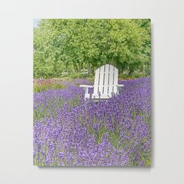 White Chair in a Field of Purple Lavender Flowers Metal Print