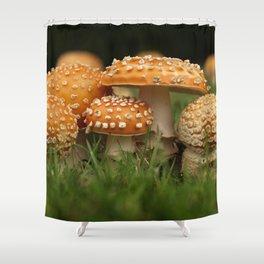 Amanita Colony... Shower Curtain