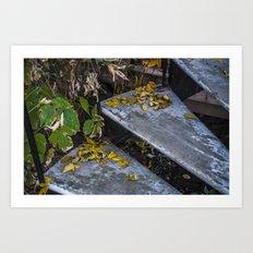 Autumn Steps Art Print