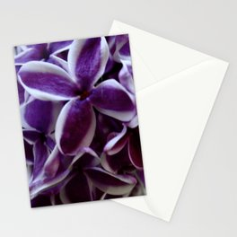 Lilacs. Stationery Cards