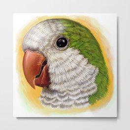 Green quaker parrot realistic painting Metal Print