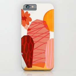 Abstraction_Cactus_&_Sun iPhone Case