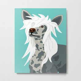 Chinese Crested Metal Print