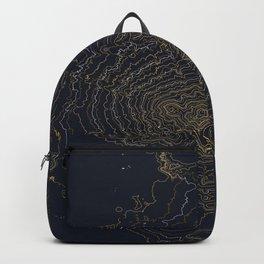 Mt. Shasta, California Topographic Contour Map Backpack