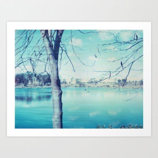 Hunter Valley Gardens Polaroid Art Print