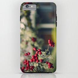 Oregon (winter)  iPhone Case