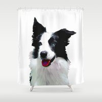 border collie Shower Curtains featuring Border Collie by Albert Tjandra