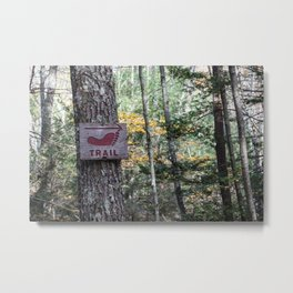 Trail  Metal Print
