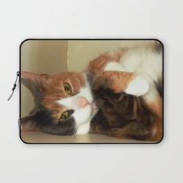 Want to take me home? Laptop Sleeve