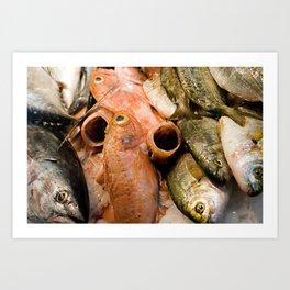 Fish at La Boqueria  Art Print