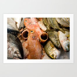 Fish at La Boqueria  Art Print