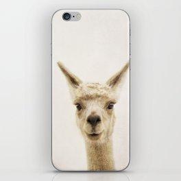 Alpaca Portrait iPhone Skin