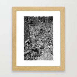 Wall in the Woods Framed Art Print