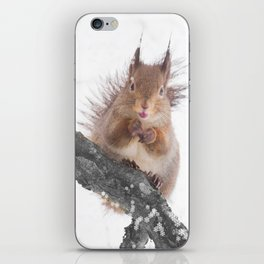 Little squirrel - smack! iPhone Skin