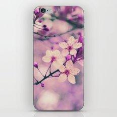 Marzo iPhone & iPod Skin