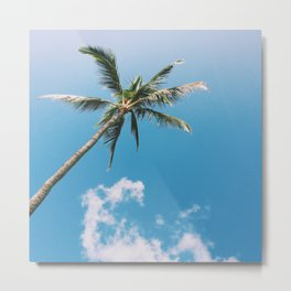 Clouds and Palms  Metal Print