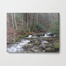 Creek in the mountains Metal Print